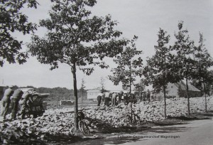 Nieuweweg puinberg