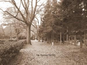 Algemene begraafplaats Wageningen